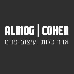 אלמוג כהן עיצוב פנים