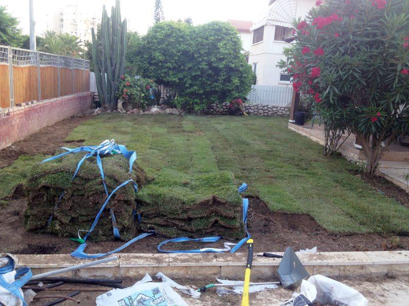 אחזקת גינות ועיצוב הגינה
