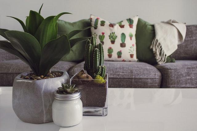שולחן לסלון – כיצד קונים שולחן בצורה נכונה